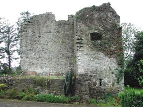 Crevenish Castle